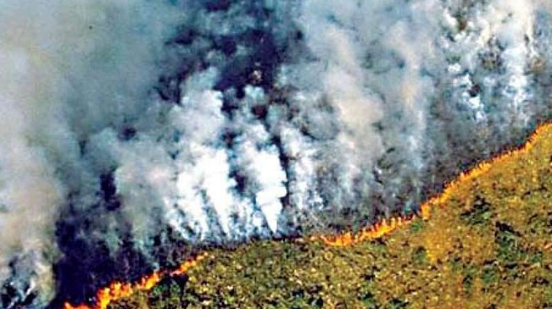 أكاذيب حول حرائق الأمازون
