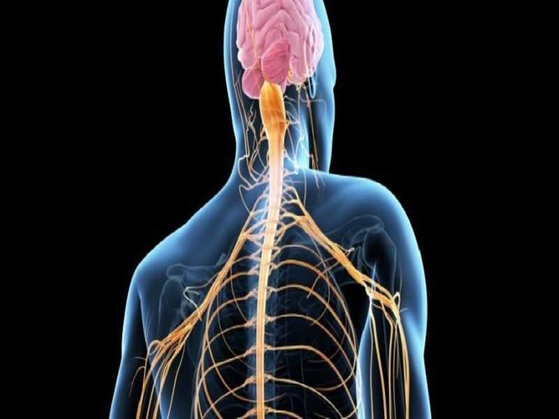 التهاب الاعصاب البصرية هي أحد صور التهاب الاعصاب الشائعة