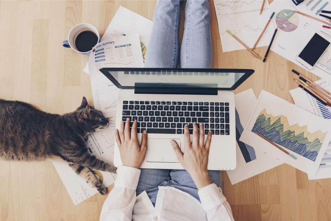 العمل من المنزل.. كيفية إتمام الوظائف من البيت بنجاح